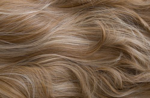 169 - Golden brown with creamy blonde highlights